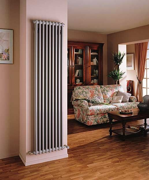 Trubchatyj radiator Arbonia 2